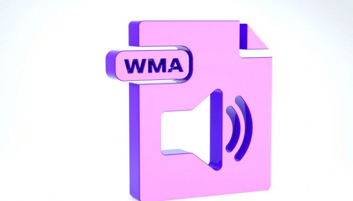 How To Play WMA Files On Android